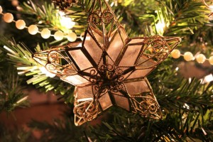 Olivia Newport Christmas Star